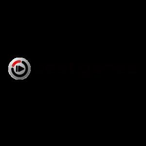 WRC 10 NINTENDO SWITCH
